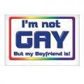 Magnet Not Gay Boy